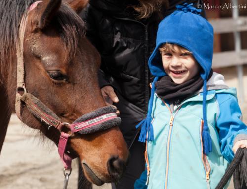 E se oggi invece di andare a scuola andassimo a incontrare i cavalli?